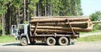На Закарпатті знову затримали вантажівку з