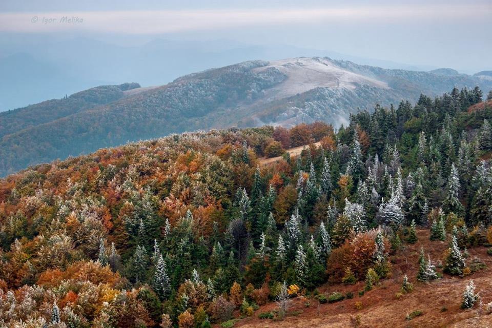 """Краса """"холодної"""" осені в Карпатах"""