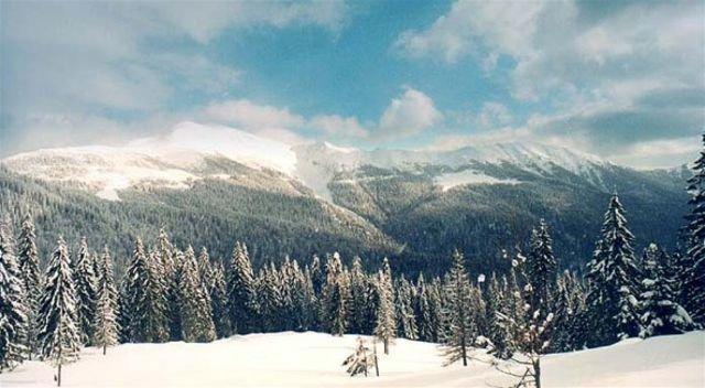Коли випаде перший сніг у Карпатах: прогнози фахівців