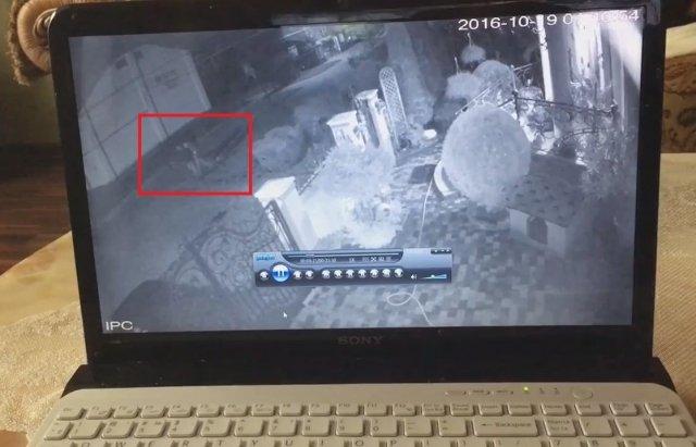 Шок! Невідомі тягнуть непритомного чоловіка на дамбу, де його знайшли вбитим (ВІДЕО з камери відеоспостереження)