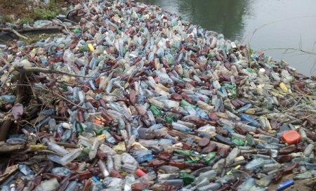 Сором! Словацьке телебачення показало сюжет про сміття, яке пливе по річці Уж до Словаччини (ФОТО)