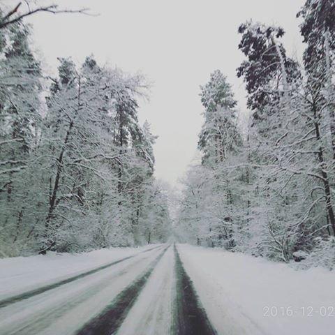 """Результат пошуку зображень за запитом """"засипає снігом"""""""