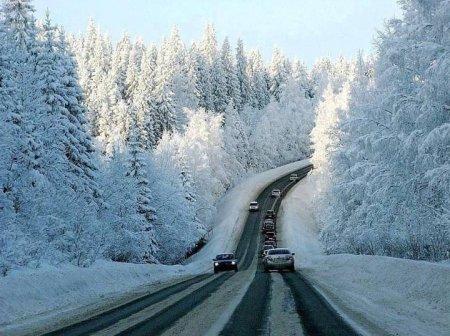 Справжня Лапландії: дорога від Стрия до Сваляви (фото)