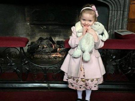 Як історія про забутого у готелі іграшкового кролика зворушила мережу