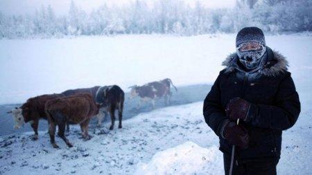 Фотограф показав, як живе найхолодніше село у світі: вражаючі фото
