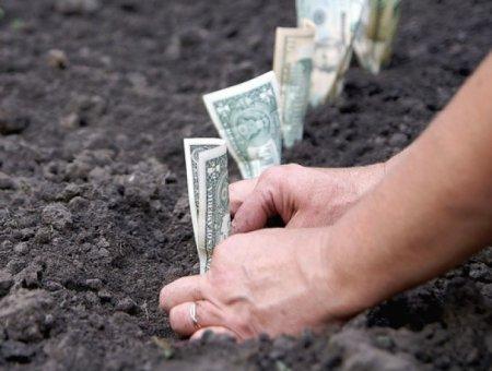 Які зміни підготували закарпатцям щодо земельного податку
