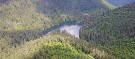Відео дня: одне із семи природних чудес України – озеро Синевир, зафільмували з квадрокоптера