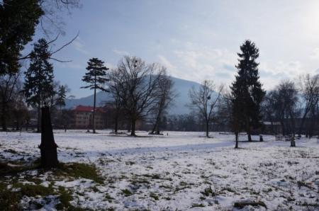 Старе кладовище у Тячеві продовжать облаштовувати під меморіальний парк (ФОТО)