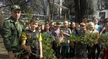 Подвір'я Дубівської школи озеленили березами та ялинками (ФОТО)