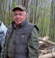 В Свалявському лісгоспі рубають ліс навіть у період тиші
