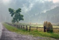 Закарпатські синоптики розповіли, якою буде погода у ці вихідні
