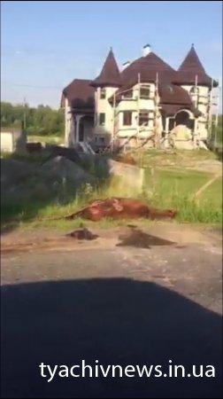 Ще одна жахлива ДТП на Тячівщині (фото)
