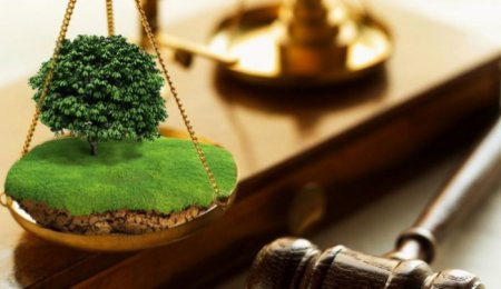Ще 2 земельні ділянки винесені на земельні торги в Закарпатті
