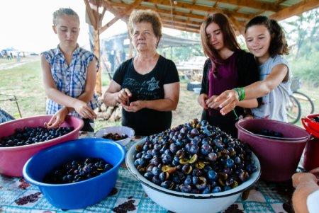 Непекельна «смола»: на Закарпатті кулінарна традиція варіння леквару – туристична принада