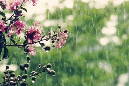 """""""Спочатку """"сезон дощів"""", а потім спека до +32″: синоптик шокував прогнозом погоди на травень"""